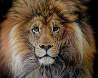 Bold Lion by Michaeline McDonald - lion art, lion, Leo zodiac, wildlife art, big cat, lion gift, big cat art, lion card, lion print,