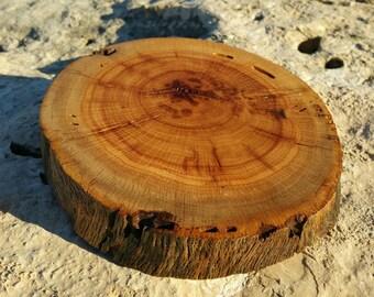 OOAK Texas live oak trivet or figurine stand, live edge, end cut
