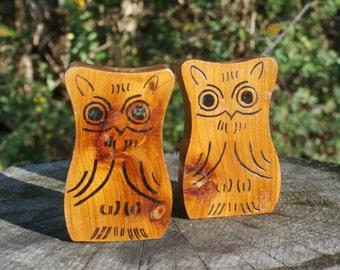 Pair Of Wooden Owl Shakers, Vintage Wood Souvenir Mt. Gayler Tower, Winslow AR
