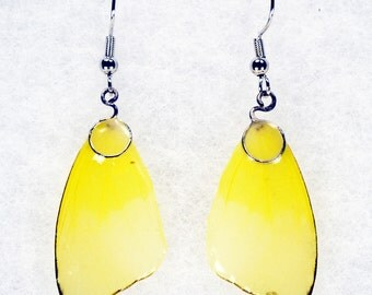 Real Butterfly Earrings - Sulphur - Hand Cast Resin