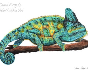 Stanley the Veiled Chameleon - 8 x10 Fine Art Print - By Laura Airey Le