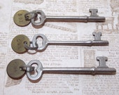 Silver Numbered Skeleton Keys with Matching Numbered Round Brass Tags