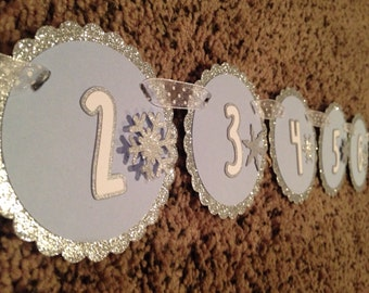 Winter ONEderland Collection: Monthly first birthday photo banner. Picture Banner. First Year Banner. Glitter Wonderland Boy Girl Custom