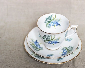 A pretty 'Forget-me-not' vintage floral china trio/set.