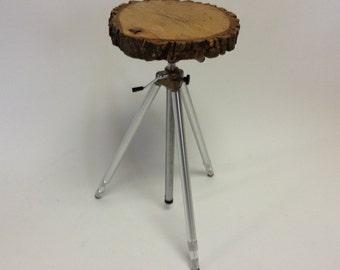 Tree Slice Tripod Table Assemblage