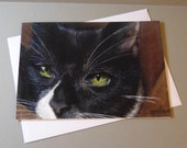 Daz the Cat art card by E...
