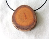 small buckthorn necklace - branch slice pendant on a leather cord
