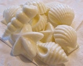 Chocolate Candy Shells, Favors, Wedding, Birthday 11 pieces