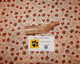 "Organic Medium Elk Antler Dog Chew ""Made in Montana"" (Lot 749)"