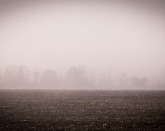 Field - Fine Art Landscape Photography, Trees in Fog, Nature, Sepia, Wall Art