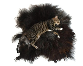 Cat Bed - Dog Bed - Cruelty Free Felted Wool Fleece Rug - Navajo Churro Black Ram - Supporting Small US Farms - NOT a SheepSkin