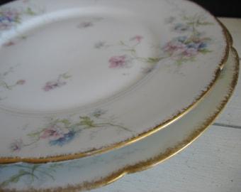 Vintage Theodore Haviland Limoges Plates