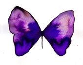 """violet two tone butterfly 8 X 10"""" original watercolour painting"""