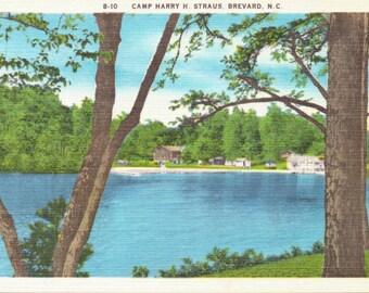 Brevard, North Carolina, Camp Harry H. Straus - Linen Postcard - Unused (O)