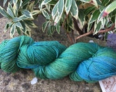 "Hand  painted merino/silk/yak fingering weight   yarn "" ferns"