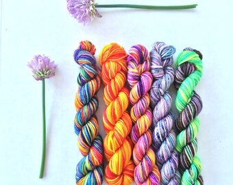 Indelible Sock Yarn - Summer Mini Skein Set of 5 - In Stock