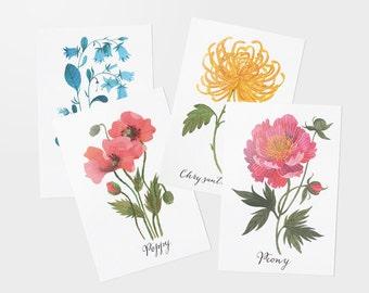 Floral postcards - set of 4