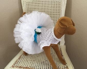 Southern Charm Dog Dress, Aqua Blue