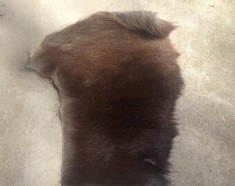 Sika Deer Scrap Fur