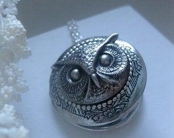 Owl Locket - Jewelry - Owl Necklace - Silver Locket - Photo Locket - Custom Length