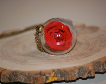 Real Rose Globe Necklace