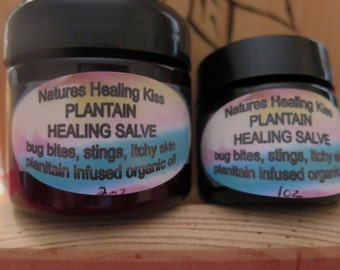 PLANTAIN HEALING SALVE - takes the itch out of bug bites and the pain out of bee stings