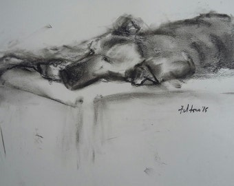 Charcoal drawing of dog dozing on an outdoor bed