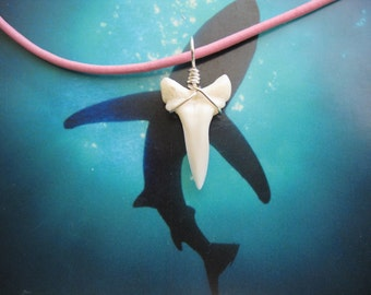 Shark Tooth Necklace, Modern Day White Shark tooth, Silver plated wire, Pink Leather cord