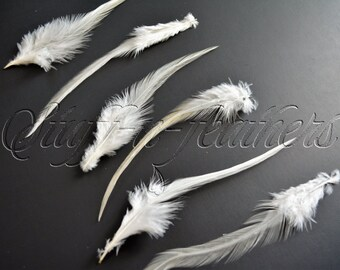 "Ivory rooster saddle feathers, loose thin real feather for hair extensions, millinery, fishing / 6-7"" (15-17.5cm) long, 12 pcs / F63-6/12"