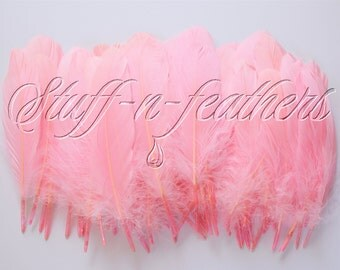 Wholesale / bulk feathers - Baby Pink GOOSE pallets feathers, loose light pink feathers for millinery, crafts, DIY, 60 pcs / 5-8 in / FB196