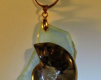 Blue Green Seaglass Fossil Ammonite Pendant