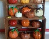 Homemade miniature shelf full of 17 pumpkins