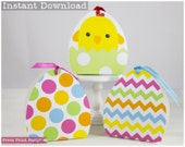 Easter Basket Treat Boxes...