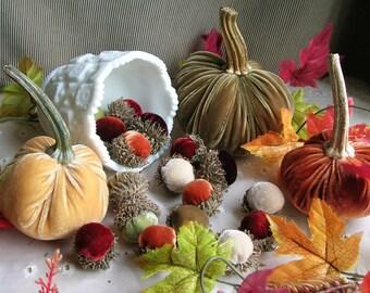Velvet ACORNS in Real Acorn Caps Thanksgiving Table Scatter ADD Silk Velvet Pumpkins Fall Home Decor Thanksgiving Centerpiece Hostess Gift