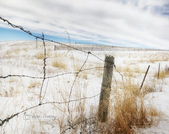 Rustic Photography, Winter Wall Art, Country Landscape, Neutral Farmhouse Decor, Fence Photograph | 'Fenced In'
