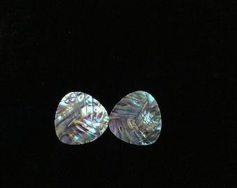 Carved Abalone stud earrings