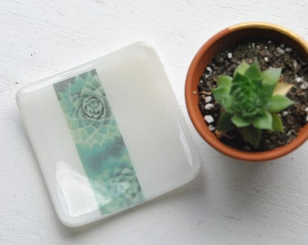 Succulent Dish / White Succulent Mini Fused Glass Dish