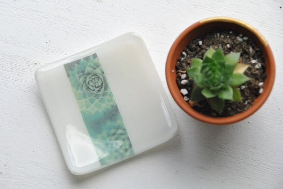 Succulent 3x3 Small Square Glass Fused Dish in White Glass