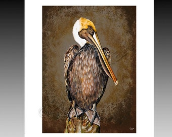Brown Pelican Print