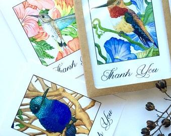 Thank You Card Set, Hummingbirds Fine Art Prints