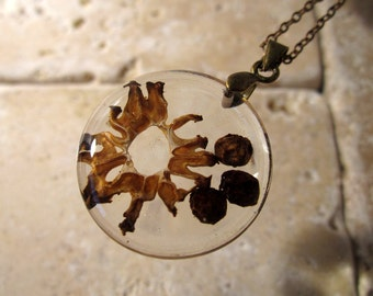 Morel Mushroom Circle Resin Necklace, food Jewelry, Plant jewellery, Mycology, fungi,  nature, brown, black, Antique bronze  chain