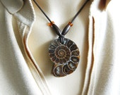 FOSSIL AMMONITE Pendant from Madagascar - Creataceous Age - very AWESOME !!