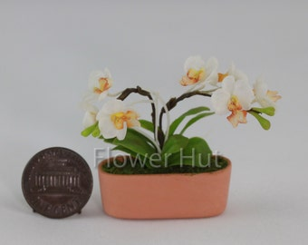 Phalaenopsis Orchid Flower dollhouse miniature Air Dried Clay Floral 1:12th