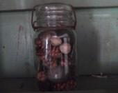 Antique Atlas Quart size Canning Jar filled with Natural woodland Potpourri