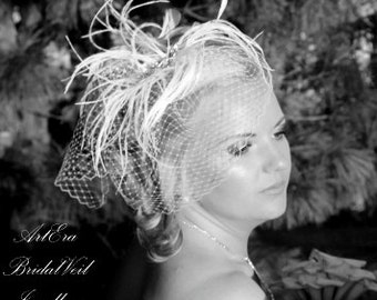 Feathers,  rhinestone brooch,  bridal veil set,  birdcage Veil, elegant,  white,  ivory