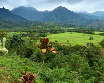 Hawaii, Kauai, Hanalei Bay, paradise, clouds, crops, taro fields, misty mountains, valley, pacific ocean, fine art photograph picture print
