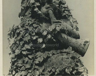 Italy sculpture with vine vintage photo