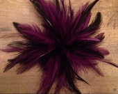 purple berry wine & Black feather hair clip fascinator derby hat bridal