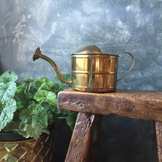 Regadera lat n vintage planta de interior regadera regadera for Manijas de regadera