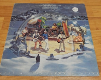 The Beach Boys Keepin The Summer Alive Vinyl Record LP rock n roll